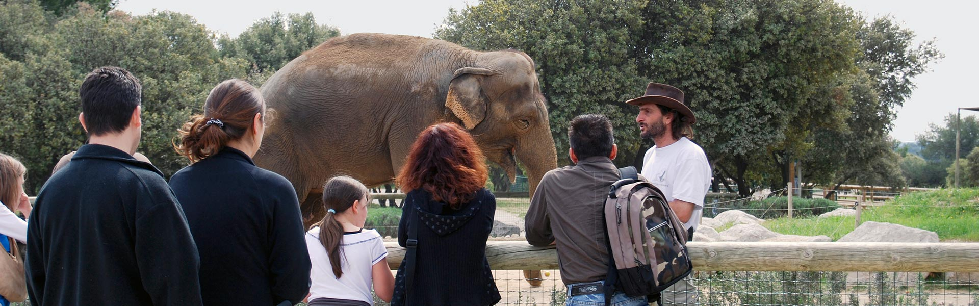 Visite guidée du zoo