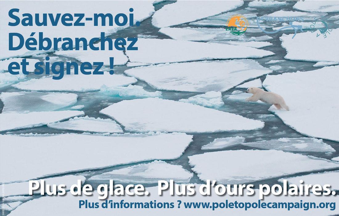 P2P signez
